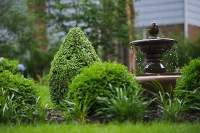 lawn-landscape-solutions-fountain